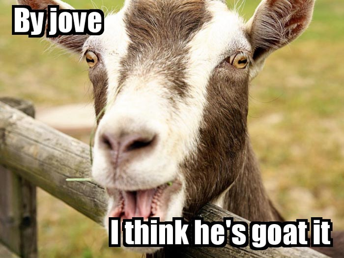 By jove, I think he's GOAT it