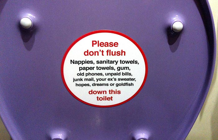 Sticker on underside of toilet seat, advising you not to flush hopes, dreams, or goldfish down the toilet